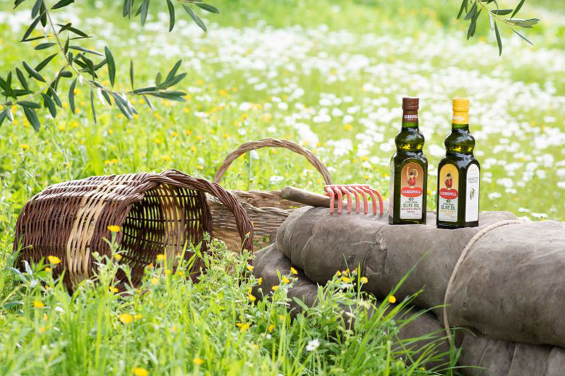 Why is Spanish olive oil so well known?