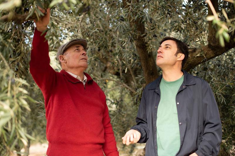 Origen del aceite de oliva
