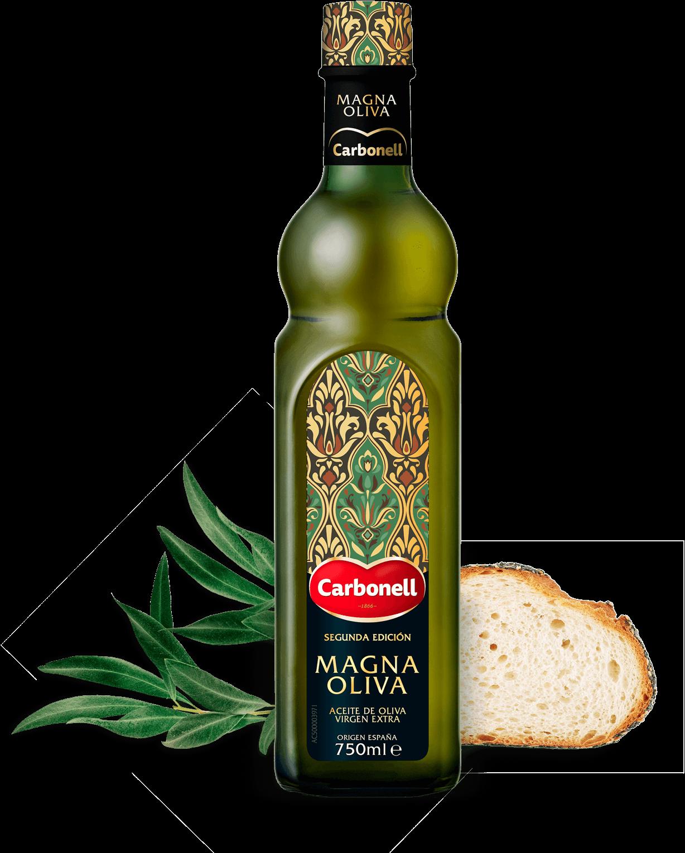 Magna Oliva