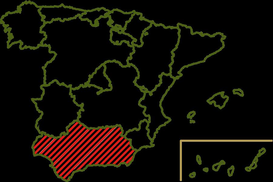 Origin Cordobesa