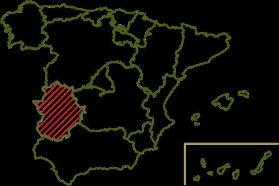 Origin Manzanilla
