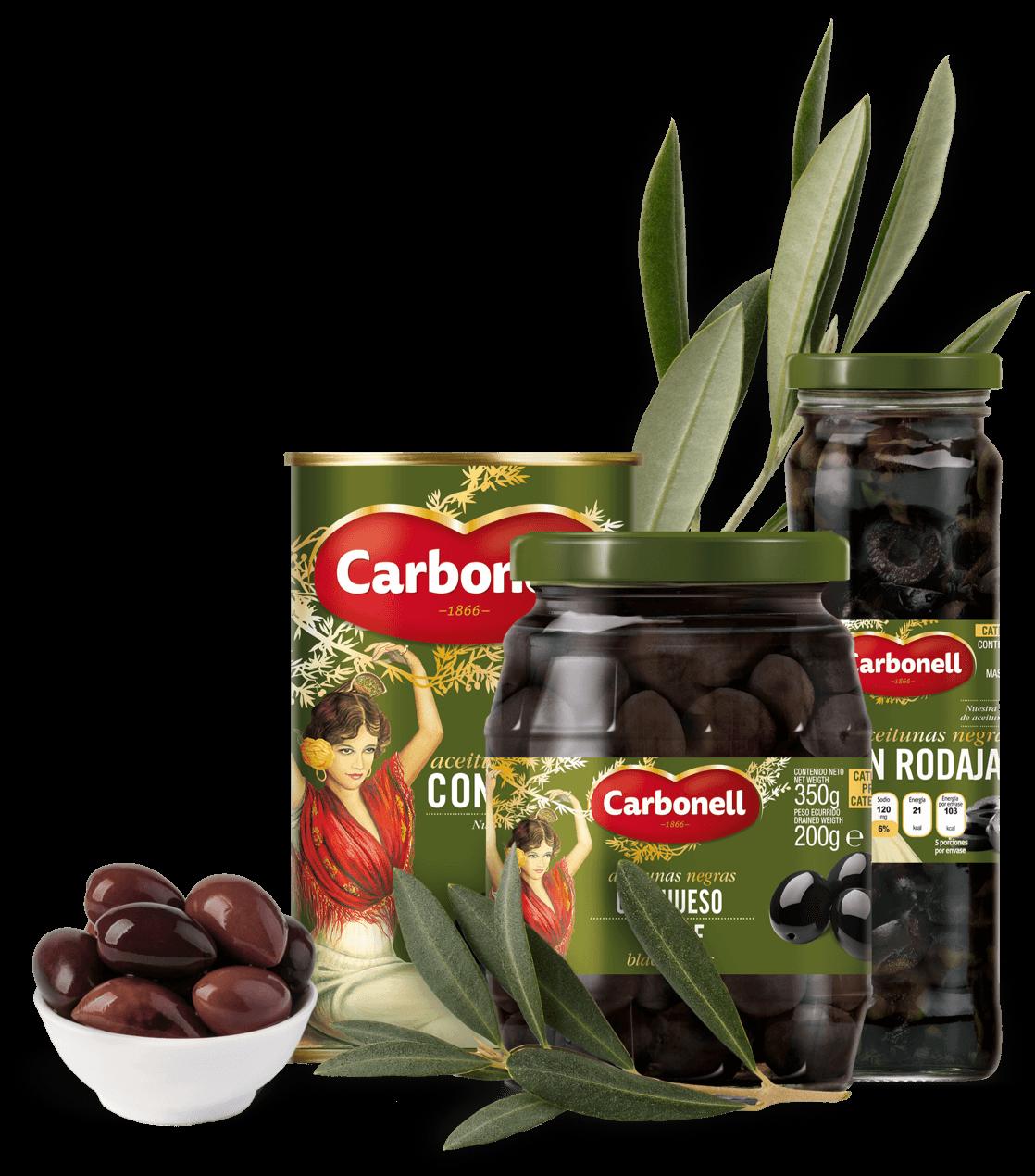 Hojiblanca Olives